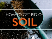 Know-How-You-Can-Get-Rid-Of-Excess-Soil